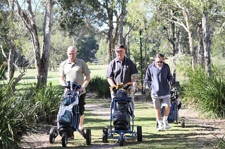 golf courses gold coast golfing tallebudgera course meadow park palm meadows lakeside boomerang farm