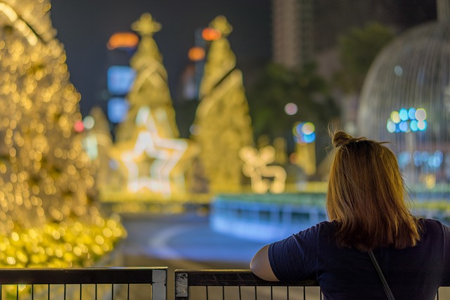 What's On At Christmas In Sydney For The Family