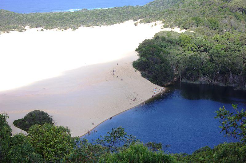 island visit sunshine coast school trip fraser moreton bribi