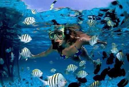 small group tours cairns